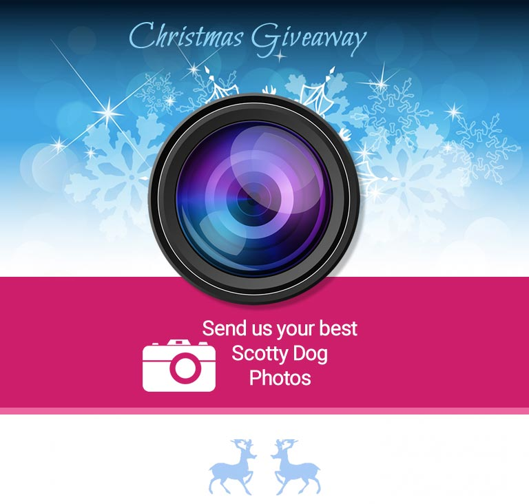 Christmas Fanpage Giveaway 2015