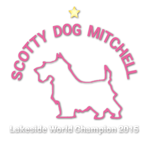 Scotty Dog Mitchell Logo